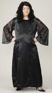 デラックスなドレスのコスチューム